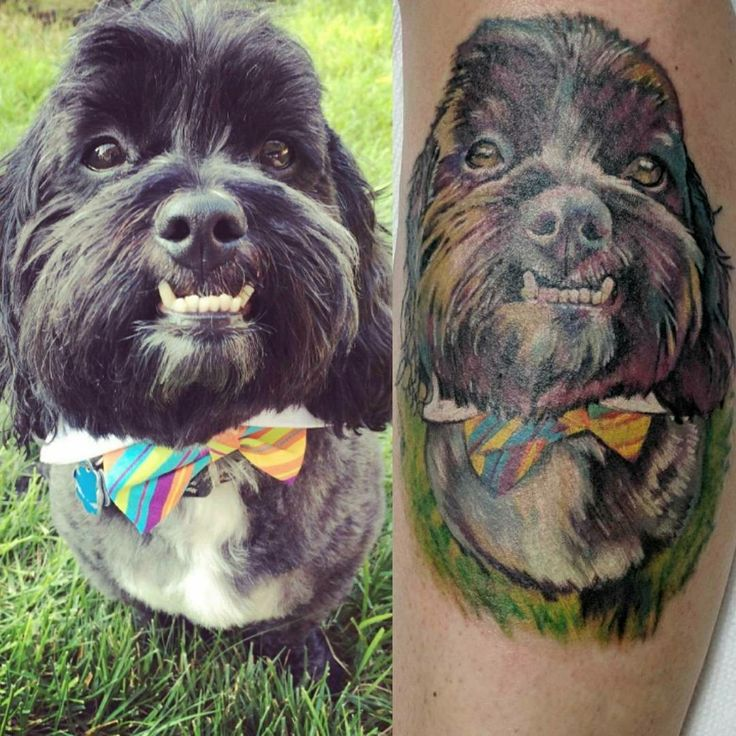 Colorful but realistic dog tattoo with bow tie.