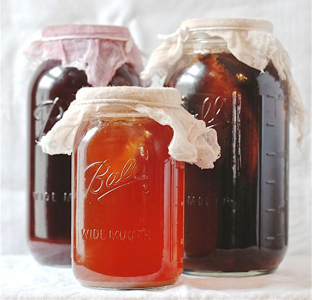 Vinegar and Kombucha with their Mothers.  Check out how to make vinegar and kombucha!  From One tomato, two tomato.