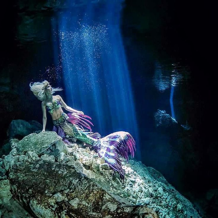 'There are secret gardens I love to explore Far below the world on the watery floor Where are colors no man has seen before Hidden in an underwater treasure store.'   Isaiah Zerbst  Photo on location in the Cenotes by the awesome @artandwater_photography David & Melanie Benz  Decorative fins on my tail by @AliciaWard <3  Dive Operator   Pro Dive International   Pro Dive Mexico PADI 5 Star Scuba Centers  Dive gear   Scubapro Many thanks again to Olympus Europe for supporting this adventure.