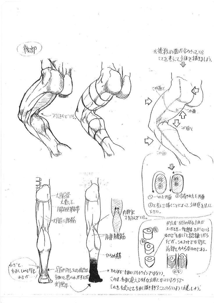 Art Discussion No. 001: Suspicious Anatomical Illustration | 美術裏話 | 活動報告書 | CAPCOM:シャドルー格闘家研究所