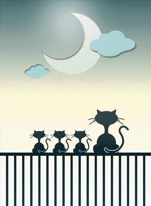 A Cat Family all gazing up at the moon<3<3<3