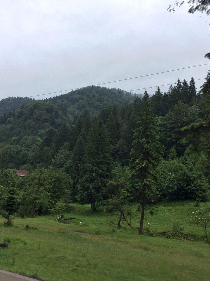 Mountain Brașov !
