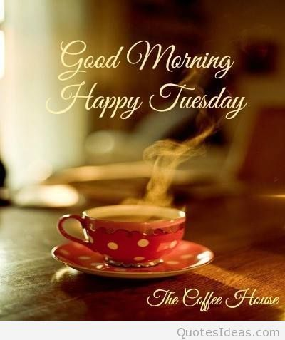 good morning happy tuesday images - Google Search