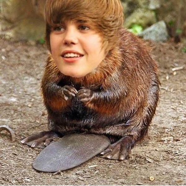 "Justin ""Beaver"""
