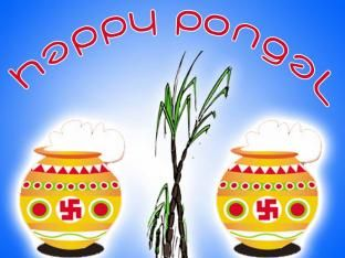 happy pongal images photos