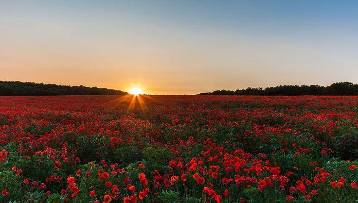 Обои для рабочего стола Восходящее утреннее солнце осветило своими яркими лучами…