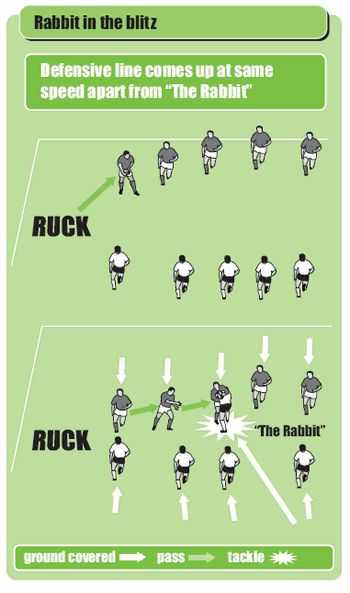 The rabbit in the blitz rugby drill