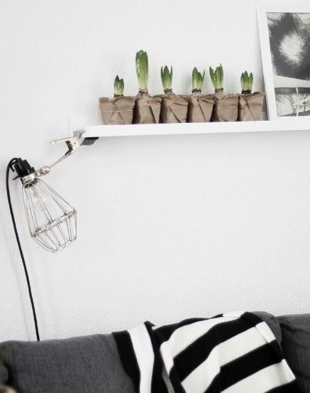 WORKSPACE | lamp