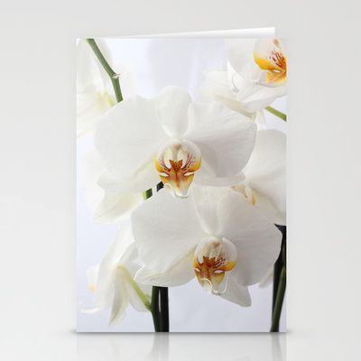Orchids White Stationery Cards by Fine2art - $12.00