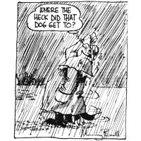 Dog Keeping Dry