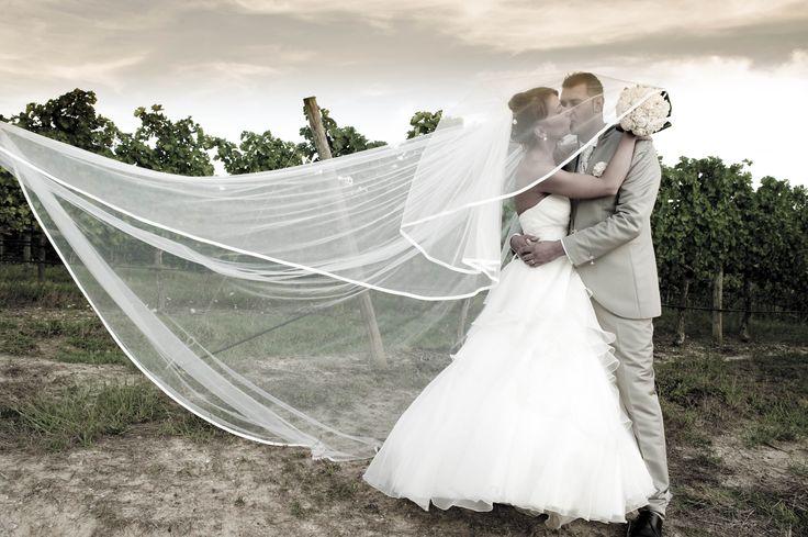 Stai cercando un servizio unico Matrimoniale Completo di Foto e Video?  Video Auge è il Fotografo di Matrimonio a Empoli che fa per te! Visito il sito e guarda le ultime foto e video realizzati. http://www.videoauge.com/fotografo-matrimonio-empoli/  Video Auge è in V. Salaiola 422 a Empoli Riceve solo su appuntamento