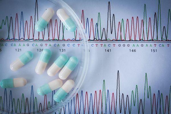 Copy number variations' effect on drug response still overlooked