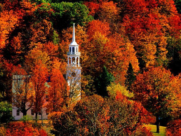 Autumn in VT: