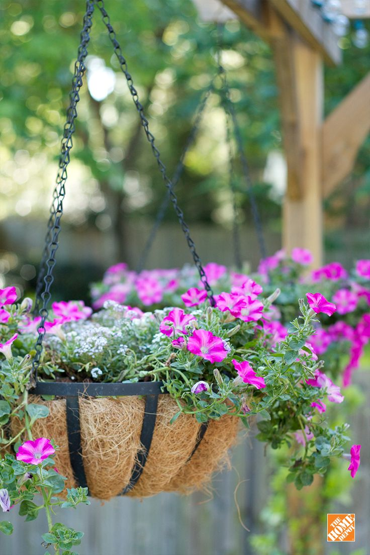 How to make hanging baskets - Mother S Day Gift Idea Choose Your Mom S Favorite Annuals And Plant Them In A Coco