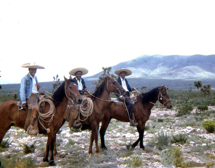 "The original cowboys were Mexican cattlemen, vaqueros. They are everything you imagine a cowboy to be. They came up with all of the cowboy lingo, including ""bronco,"" ""lariat,"" & ""stampede."" Vaqueros rode the long-haul cattle drives. Their sombreros were the precursor to cowboy hats. They wore chaps, held rodeos & lived the life of a cowboy for some 200 years.  White settlers did the right thing, stealing the culture, including the title of ""vaqueros,"" which was turned into ""buckaroos."""
