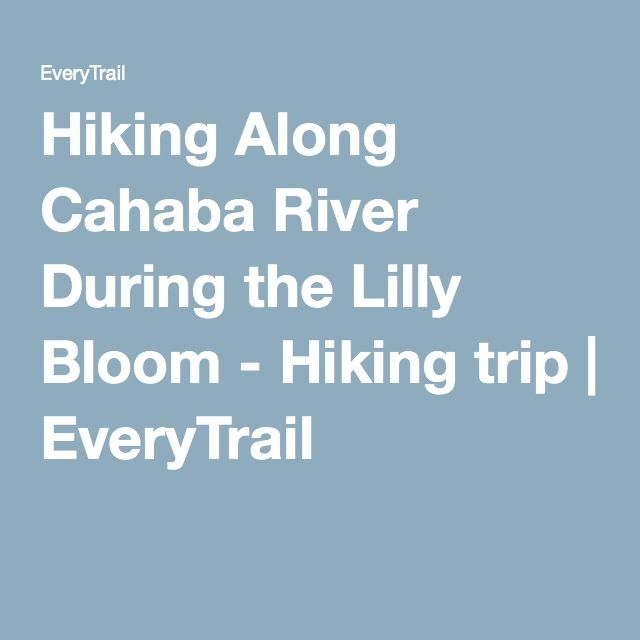 Hiking Along Cahaba River During the Lilly Bloom - Hiking trip | EveryTrail