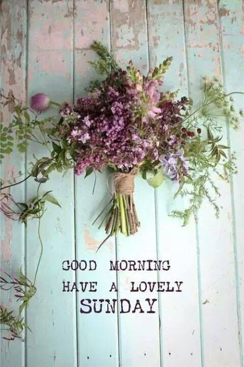 Good Morning Have a Lovely Sunday spring lovely sunday sunday quotes happy…