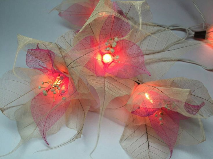 Indoor String Lights Nz : Fairy Lights-20 White-Pink Flower Fairy String Lights Hanging Wedding Gift Party Patio Wall ...