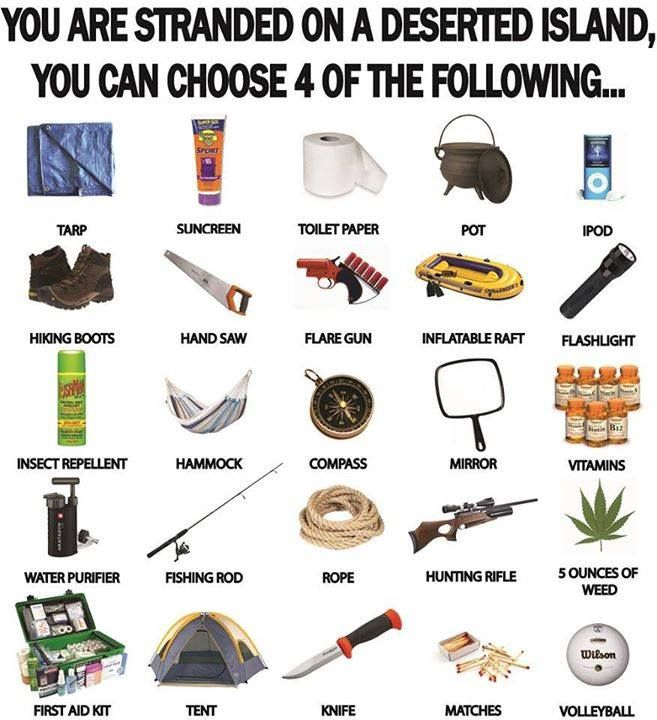 You Are Deserted on a Tropical Island. You Can Choose Four of the Following… I think: First Aid, Knife, Tarp and  Rifle