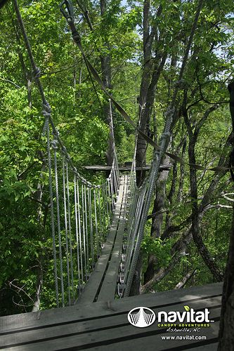 Ziplines at Navitat in Asheville, North Carolina.  Go to www.YourTravelVideos.com or just click on photo for home videos and much more on sites like this.