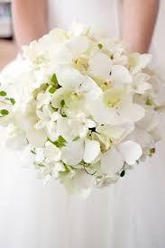 bruidsboeket orchidee - Google zoeken
