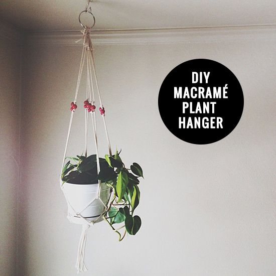 DIY macramé plant hanger | Inspired to Share