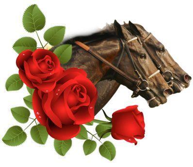 Kentucky Derby ~ Run For The Roses ~ | Roses | Pinterest