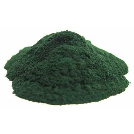 Από τις πιο αρχέγονες και πλούσιες σε θρεπτικά συστατικά τροφές στον πλανήτη! - Βιολογική ωμή σκόνη σπιρουλίνας - Organic raw spirulina powder