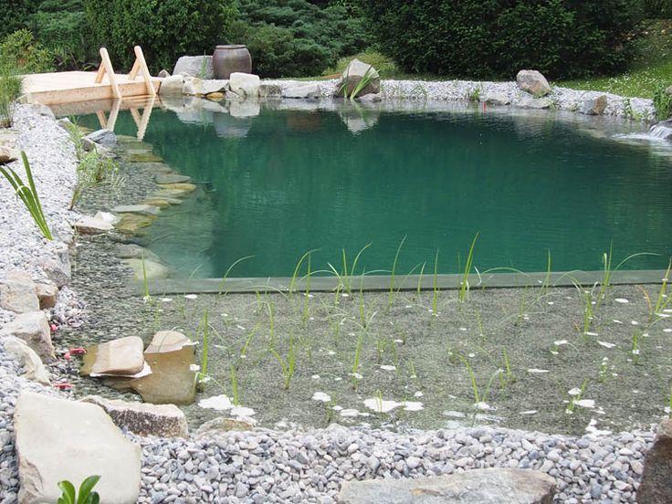 Ideal Schwimmteich Fotos Schwimmteich Bilder Gartenteich Bilder Teichfotos u Teichbilder honcak at