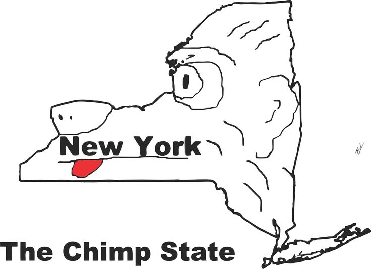Funny maps: A funny map of New York