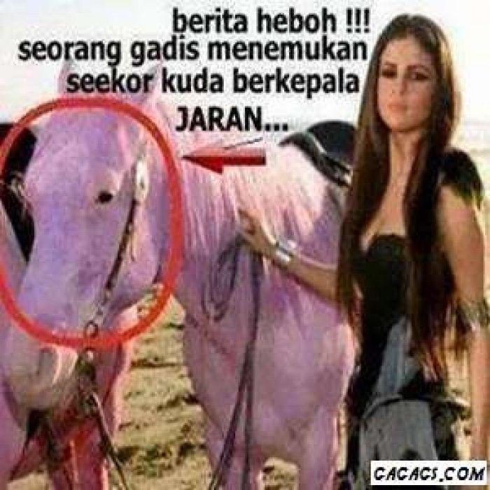 Heboh. Seorang Gadis Menemukan Seekor Kuda Berkepala Unik