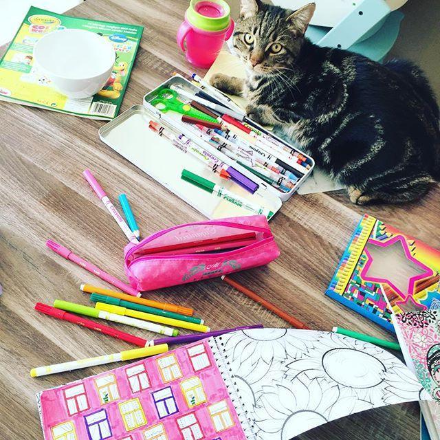 Kleuren voor volwassenen of met kinderen, blijft iets leuks! Kelly Caresse | Tekenen dat ik een echte huismus ben (en jij ook!)