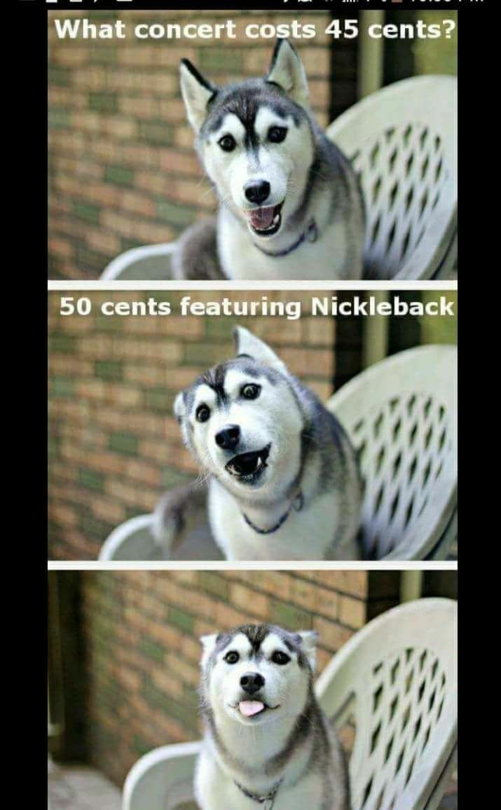 Idea By Kathy Fenstermaker On That S Too Funny Dog Jokes Funny