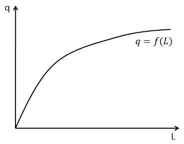 The Production Function: The Production Function in the Short Run