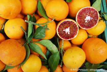 #Red #oranges at #Salemi - #Sicily