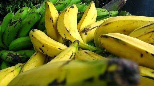 Beneficios del plátano... ¡y receta fresquita de regalo!