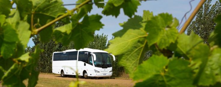 Welcome to Love Tasmania Tours - a Coal River Valley Wine Tour - just the ideal way to enjoy a sunny summers afternoon. Ahh . . . #theserenity . . . the #wine