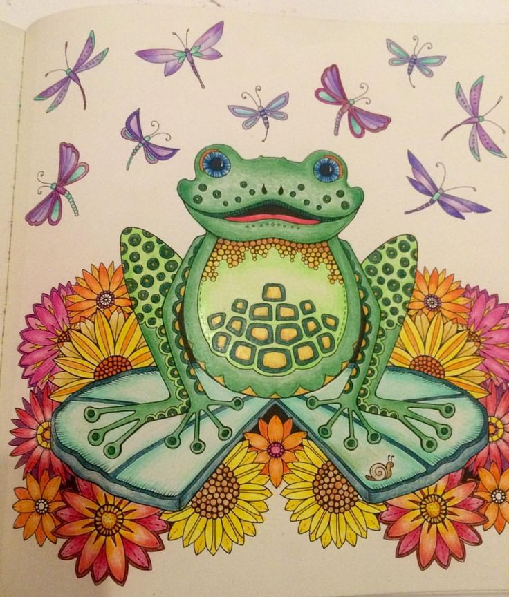 The 19 Best Enchanted Forest Frog Images On Pinterest Coloring