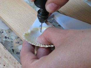 How to Drill Holes in Shells: Attach tape to ideal hole location before using a dremel.