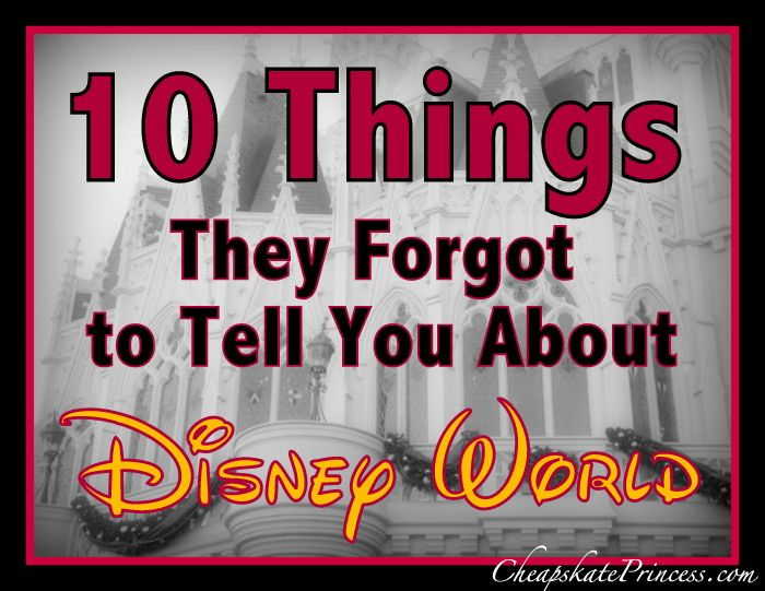 10 Things They Forgot to Mention About Walt Disney World Vacations (planning article written with Great WDW Tips!)