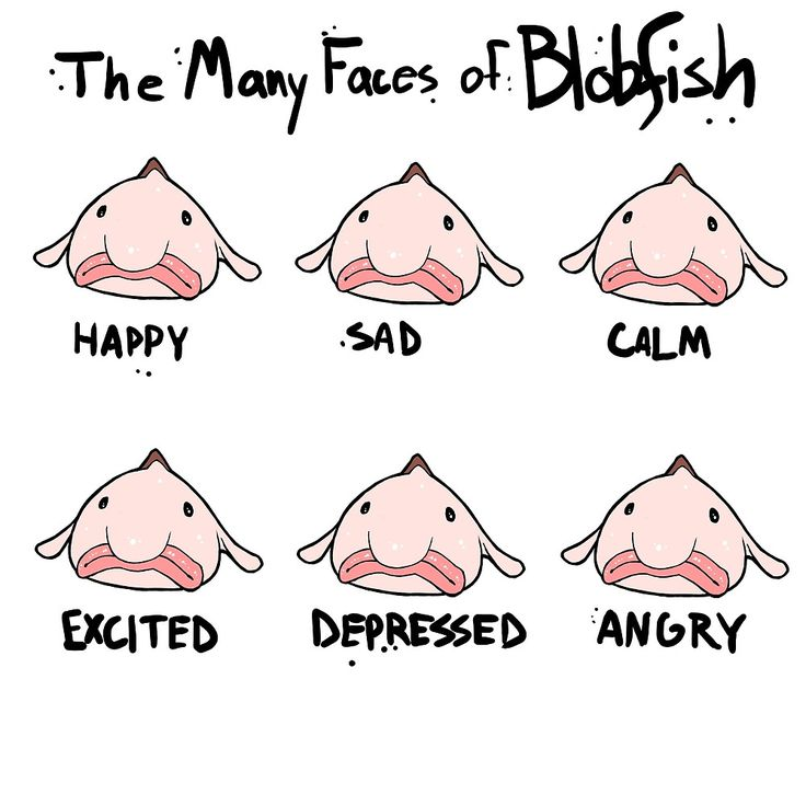 """""""The Many Faces of Blobfish"""" by Upstart 