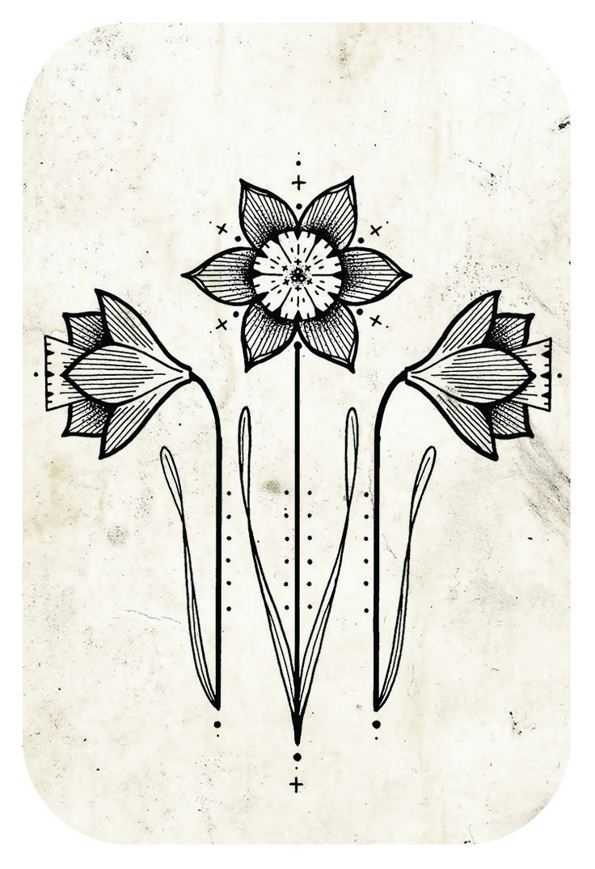 David Hale Flower