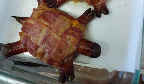 Bacon turtle hahahahaha awesome   Weird, Gross, Bad, etc.   Pinterest