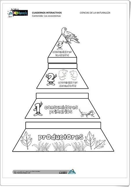 """""""Los ecosistemas"""" (Fichas recortables de Ciencias Naturales de Primaria)"""