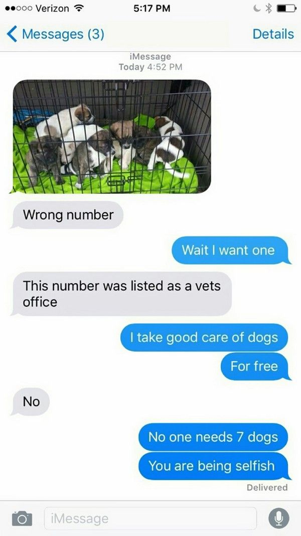 24 Funny Wrong Number Texts – Pleated-Jeans.com