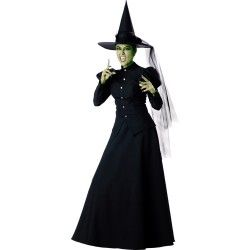 Witch Elite Collection Adult Costume #witchcostumes #Halloween coupons discounts savings clearance specials blowouts New for 2013 http://www.planetgoldilocks.com/halloween/witchcostumes.html  #witchcostumes