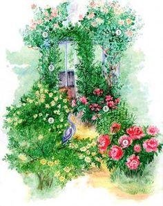 Ароматный цветник для украшения беседки 1 - Жимолость-каприфоль (Lonicera caprifolium), 2 - Роза плетистая (Rosa х hybr. climbing), 3 - Роза бедреицеволистная (Rosa pimpinellifolia), 4 - Пион садовый (Paeonia х hybr.), 5 – Лилия королевская (Lilium regale).