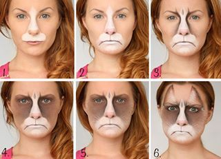 Grumpy Cat | Community Post: 32 Jaw-Dropping Halloween Makeup Ideas