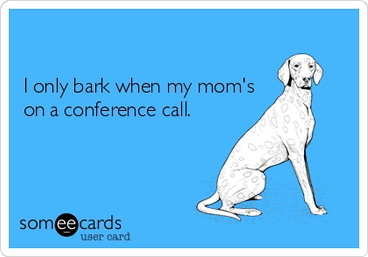 Conference Call Etiquette | ttcInnovations | meeting | conference call tips