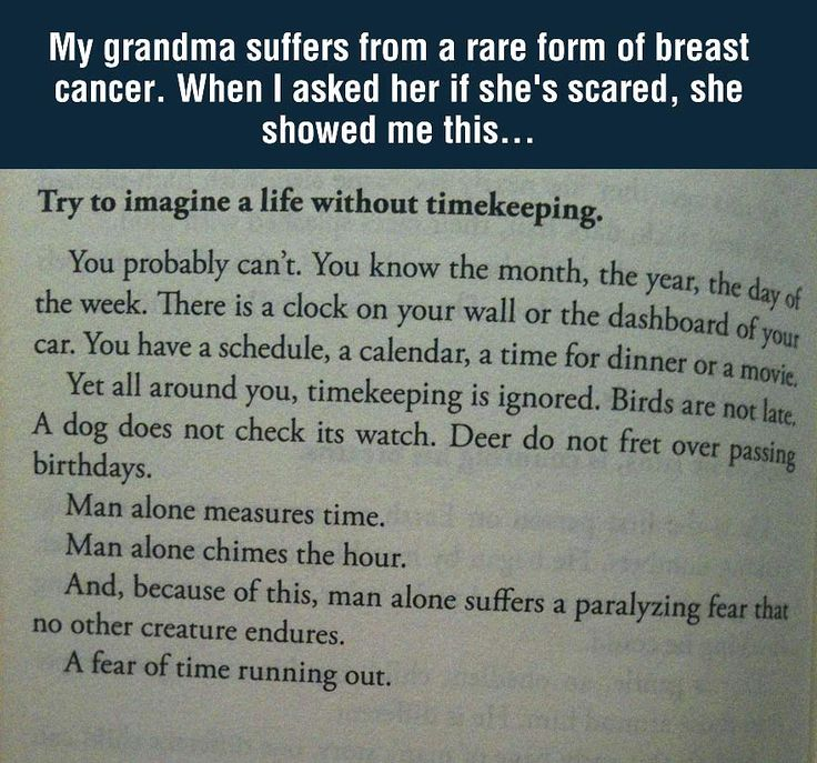 Beautiful and profound view of life... gave me the chills